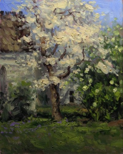 Plantation Dogwood 20x16 oil on canvas