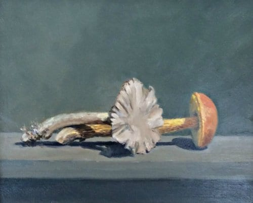 Lewis Mushoom Still Life II 8x10 oil on panel