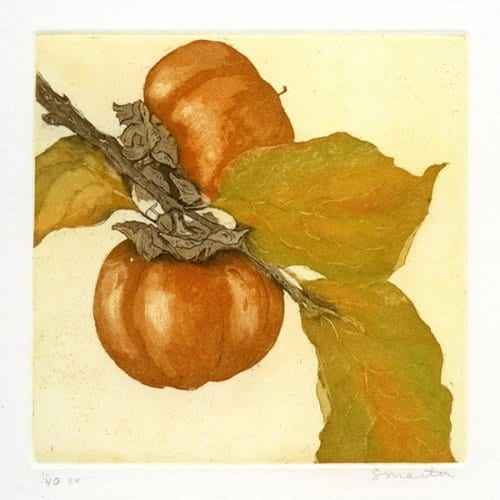 Martin Two Persimmon 5x5  etching with aquatint unframed