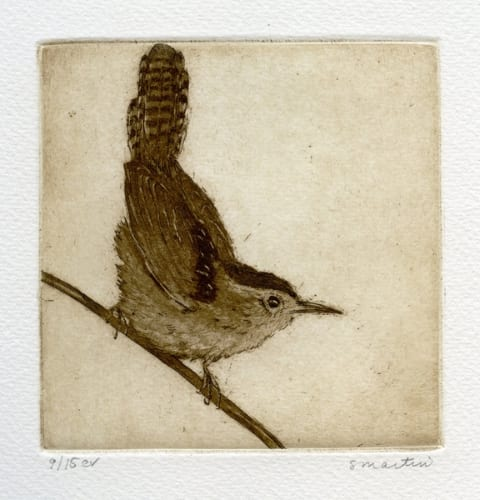 Martin Marsh Wren 4.5x4.5 etching unframed